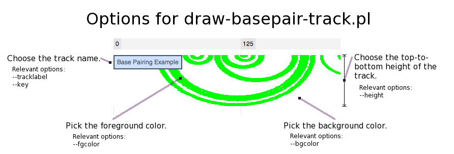 600px|center|thumb|Summary of draw-basepair-track.pl options.
